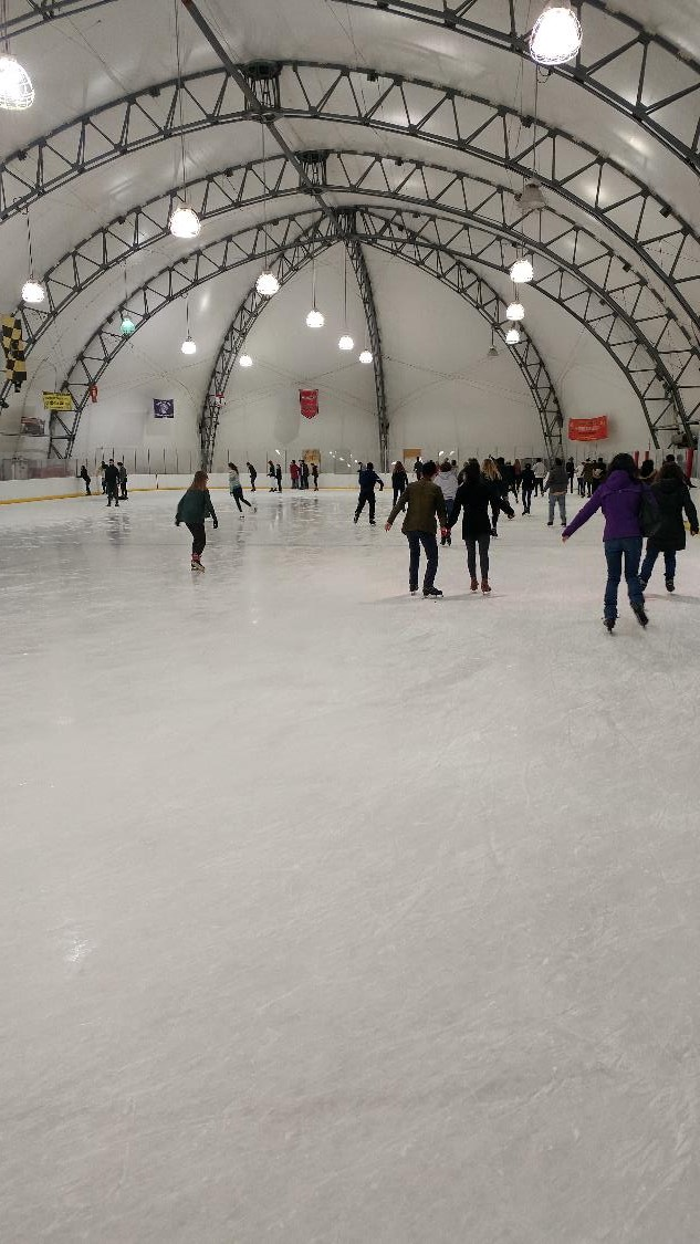 Ice Skating Feb 2017 2 compressed