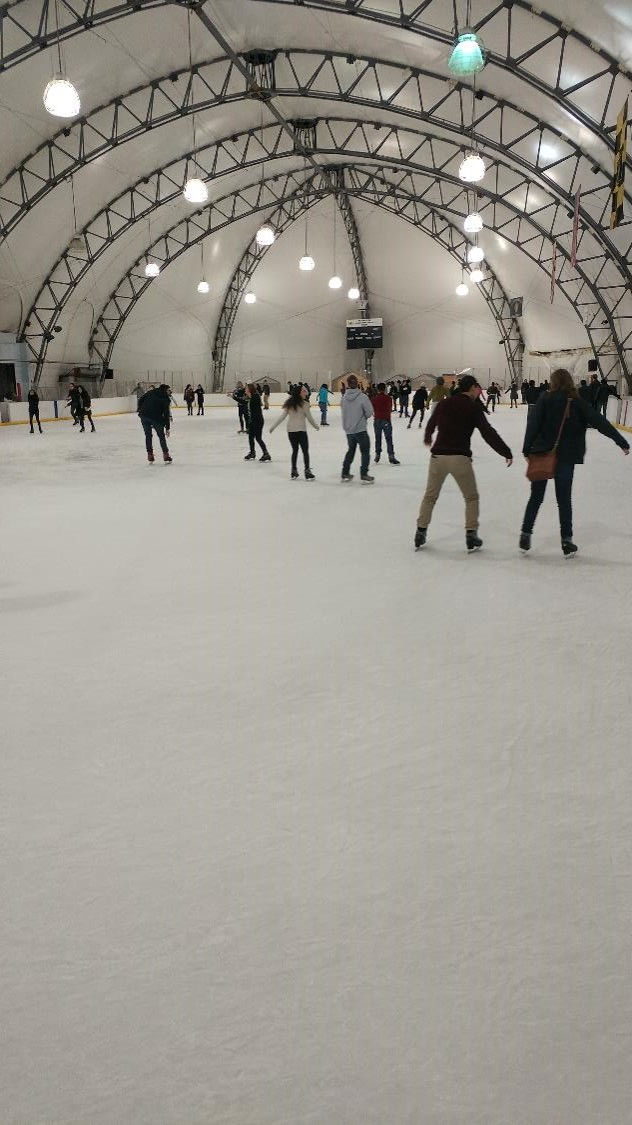 Ice Skating Feb 2017 6 compressed